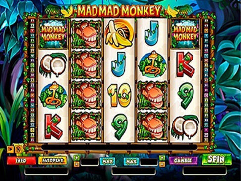 Mad Mad Monkey gameplay