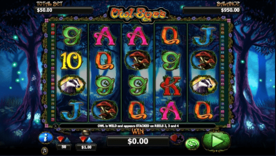 Owl Eyes slots gameplay