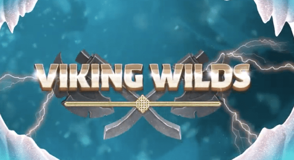 Viking Wilds Slot Wizard Slot