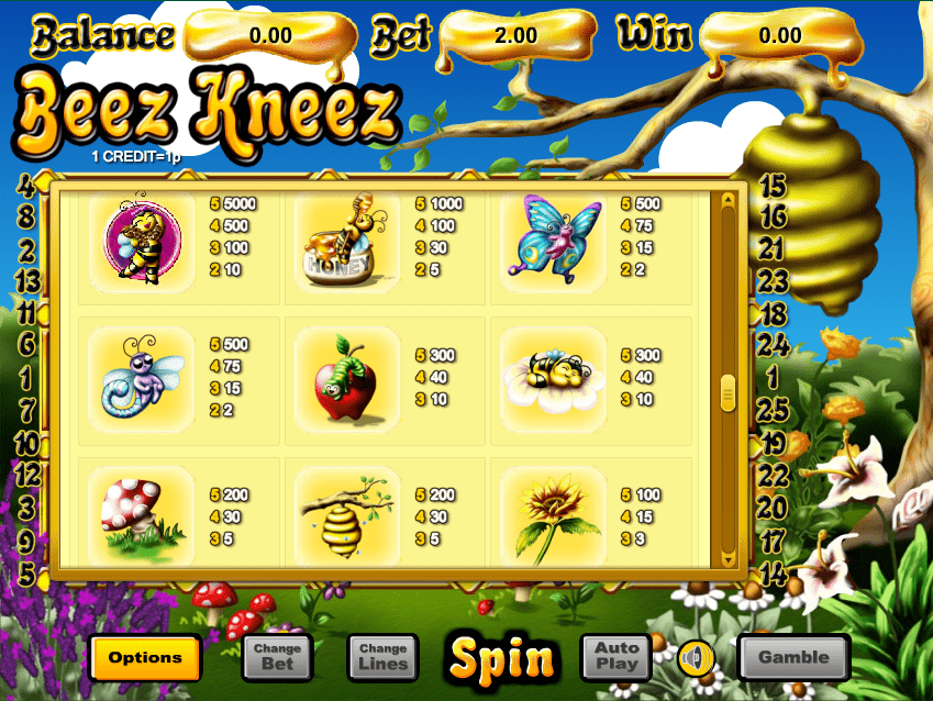 Beez Kneez Slot Paytable