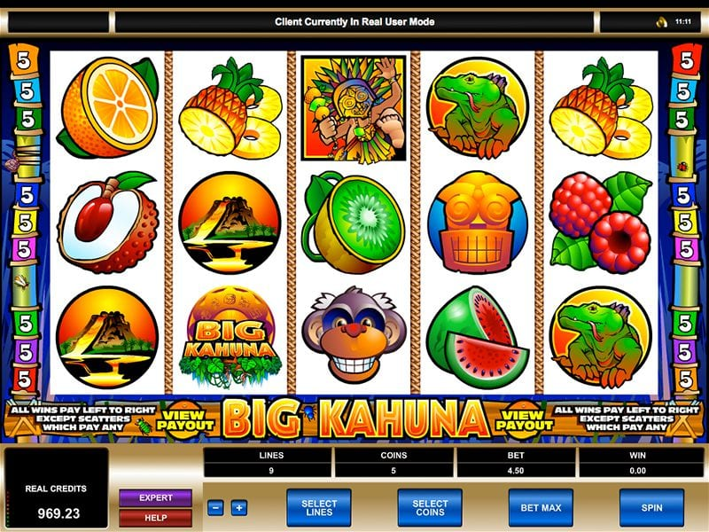 Big Kahuna slots gameplay