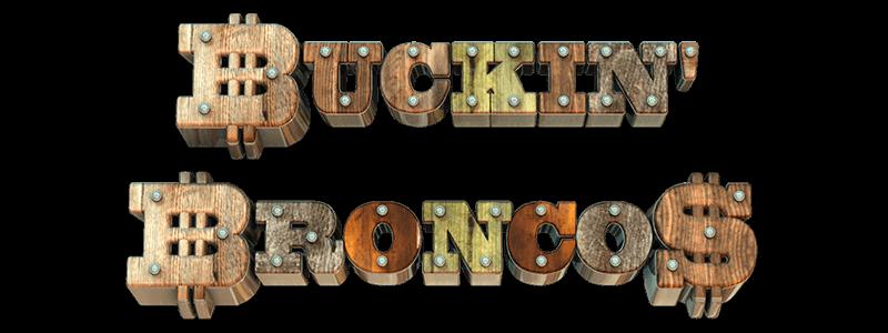 Buckin' Broncos Slot Wizard Slots