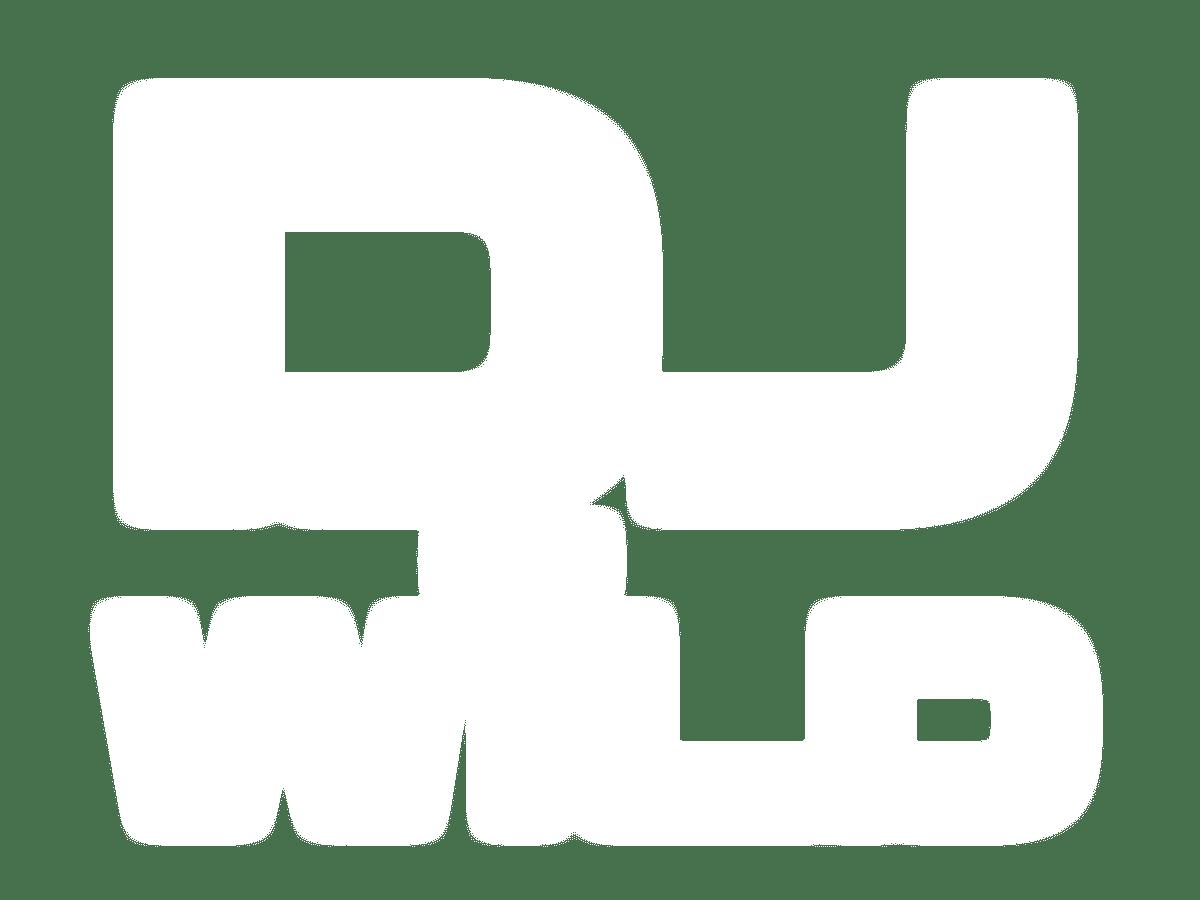 DJ Wild online slots game logo