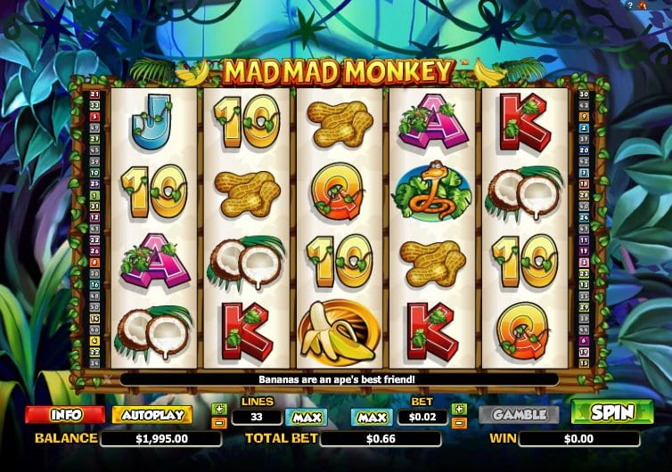 Mad Mad Monkey slots gameplay