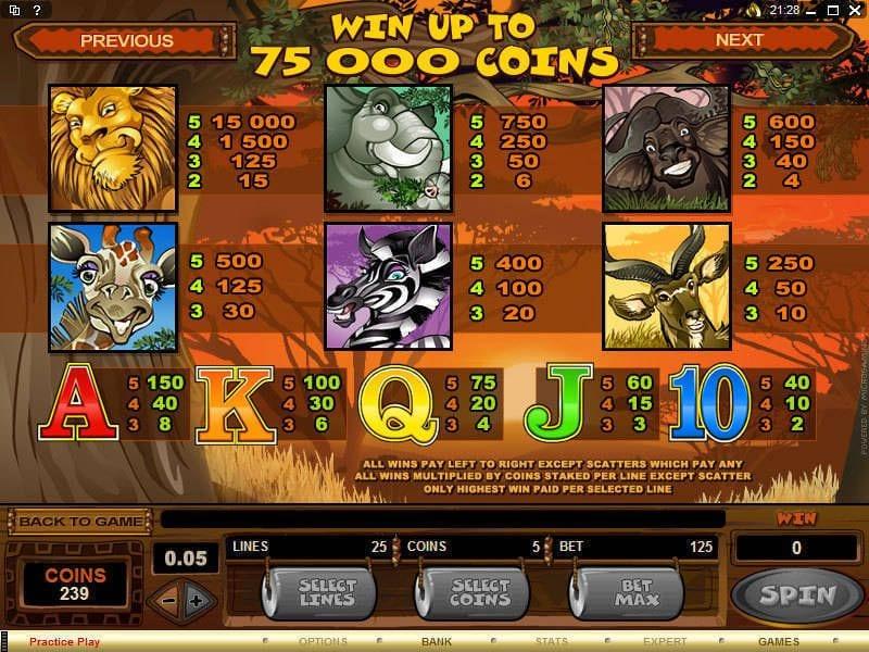 Mega Moolah Slot Symbols
