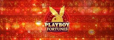 Playboy Fortunes Slot Wizard Slots