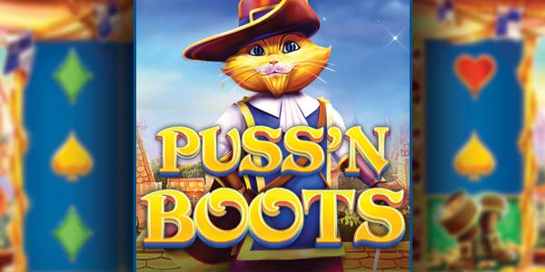 Cat in musketeer outfit - puss in boots logo at front