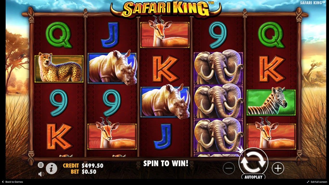 Safari King Slot Wizard Slots