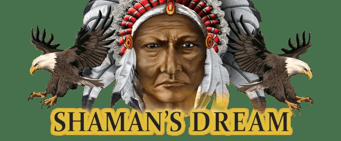Shamans Dream WizardSlots