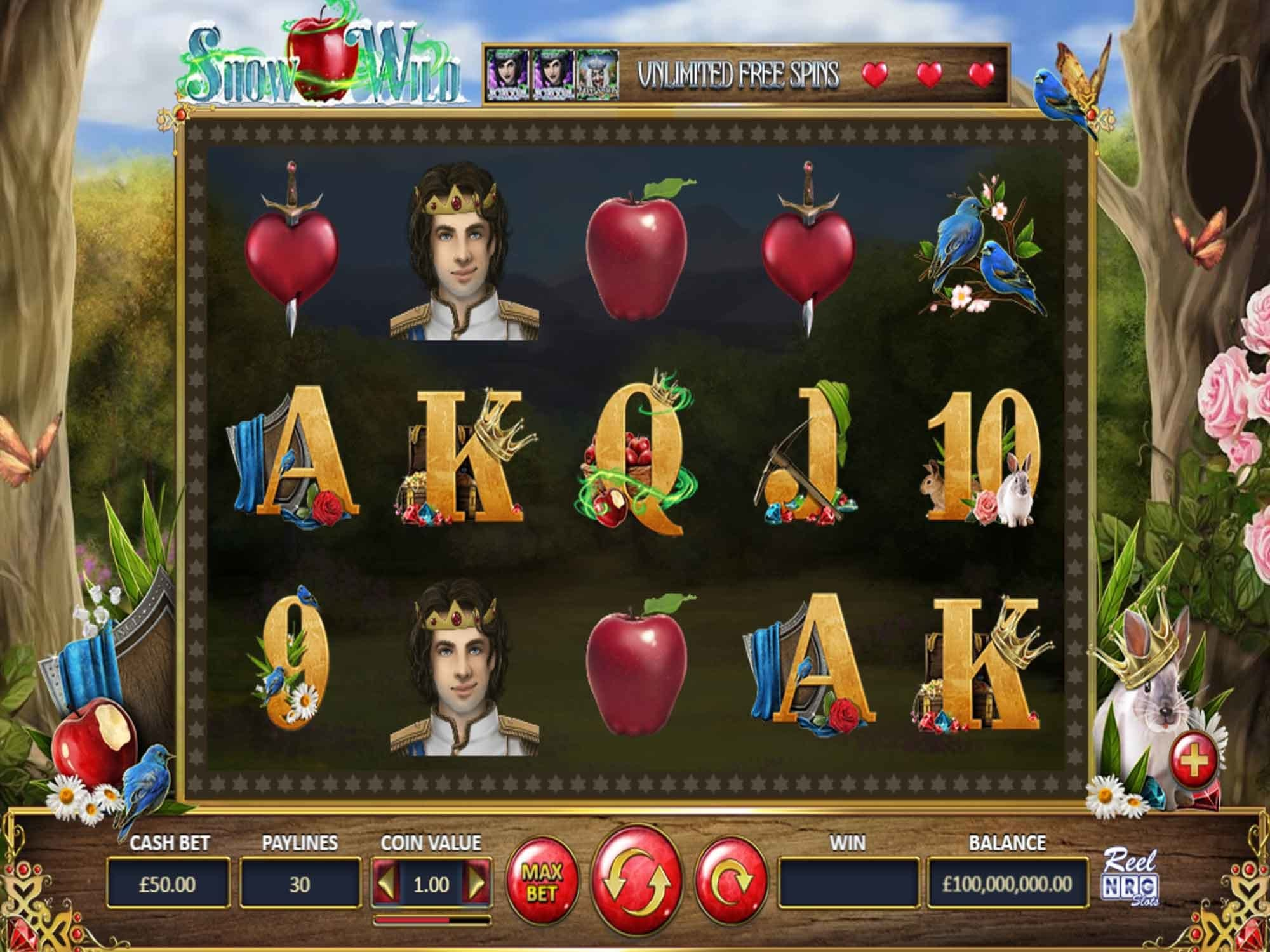 Snow Wild Slot Game
