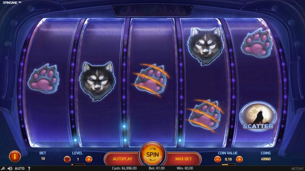 Spinsane Gameplay Casino