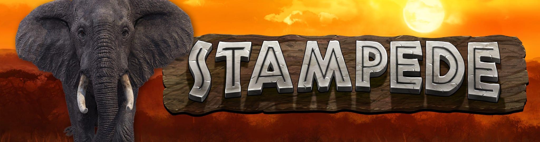 Stampede online slots game logo