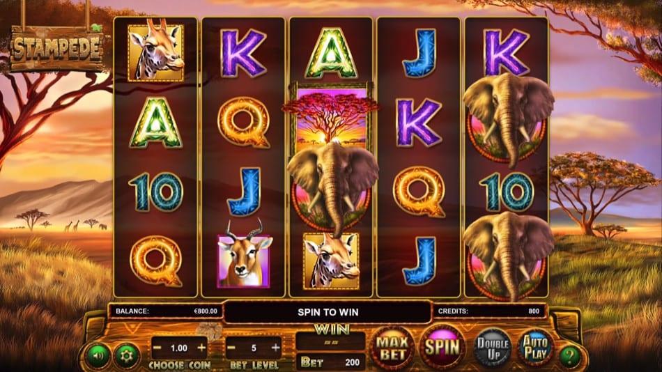 Stampede Jackpot Gameplay 2