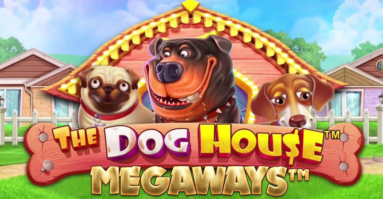 Dog House Megaways Slot Wizard Slots
