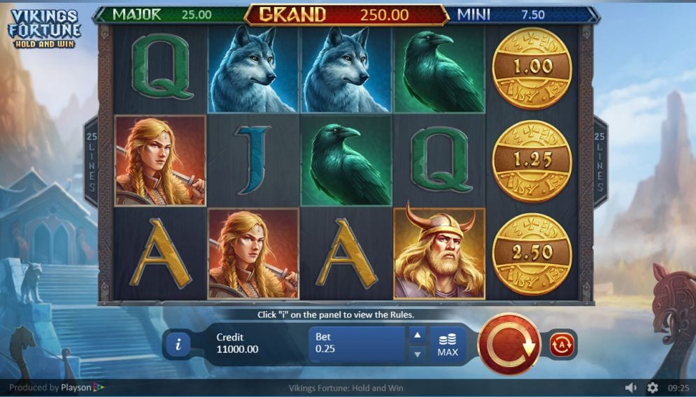 Vikings Fortune: Hold and Win Slot Online