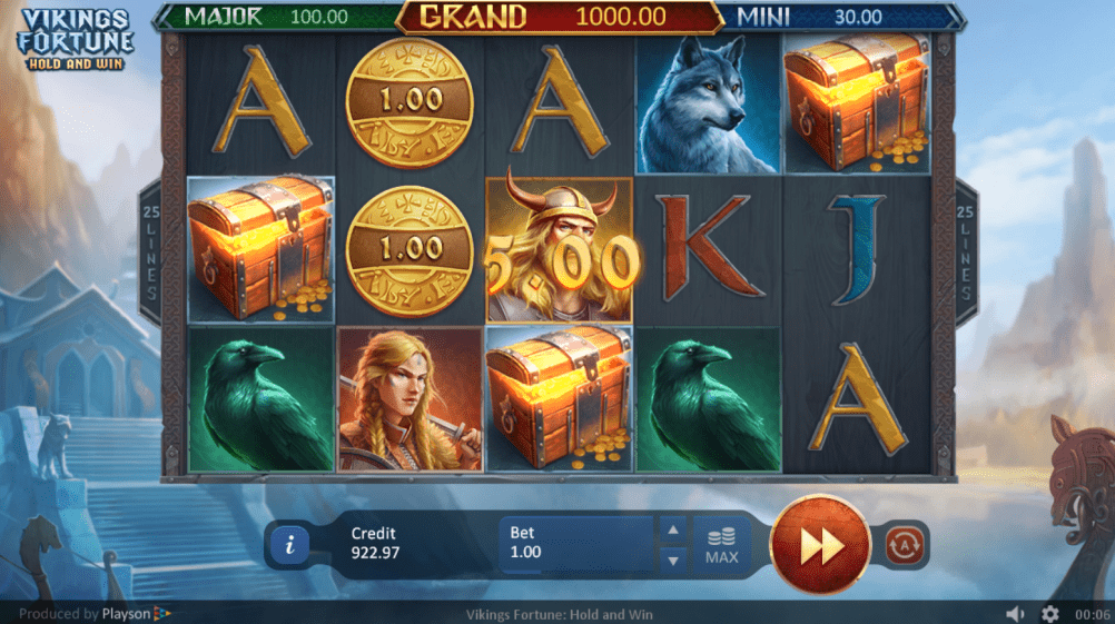 Vikings Fortune: Hold and Win Slots