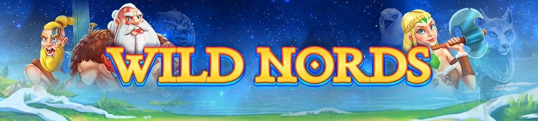 Wild Nords Slots Wizard Slots