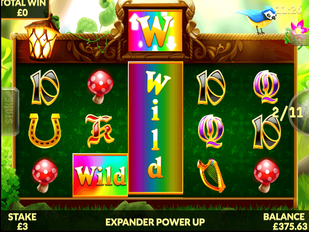Wild Rover Free Slots