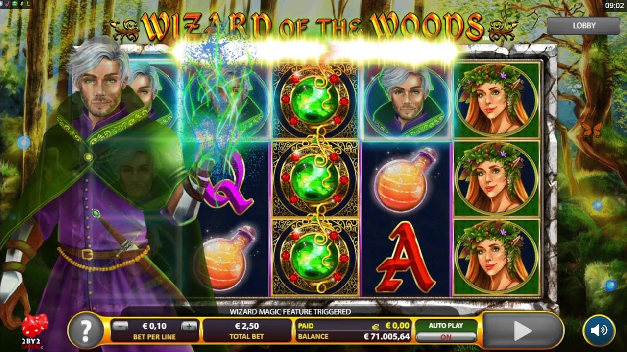 Wizard of The Woods Slot Game